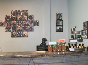 Dirty Dog Depot | Tega Cay, SC | dog and cat grooming and supplies | inside store